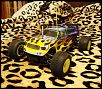 PICS OF YOUR RC NITRO OFF-ROAD CARS-academy.jpg